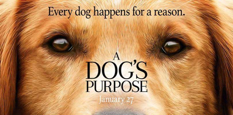 Psí poslání / A Dog's Purpose (2017)(CZ)
